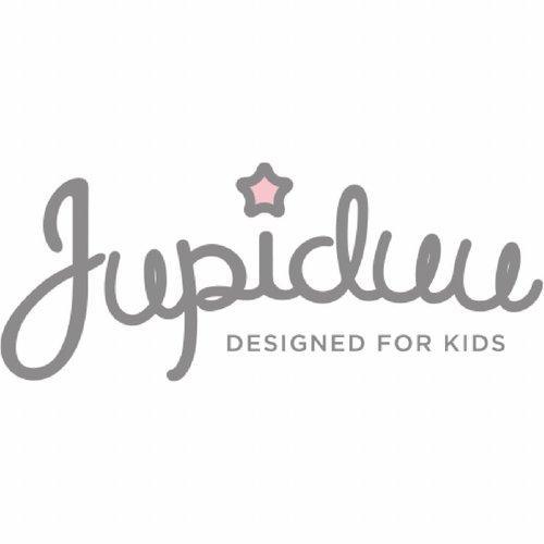 logo jupiduu